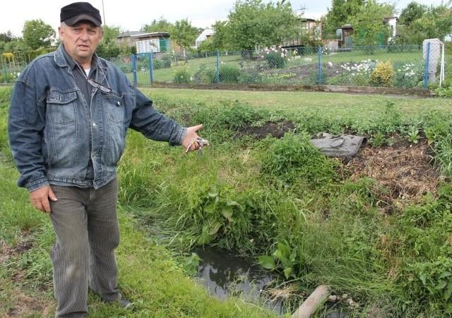 """- Dbaliśmy o ten rów, w wodzie pojawiły się żaby, a teraz znowu ktoś zamienia nam go w szambo! - mówi oburzony Adam Niemiec, gospodarz ogródków działkowych """"Polna 1"""" w Kluczborku."""