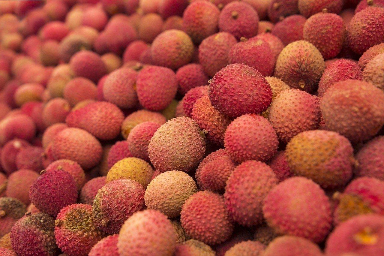 serwis randkowy owoców tcf randki online