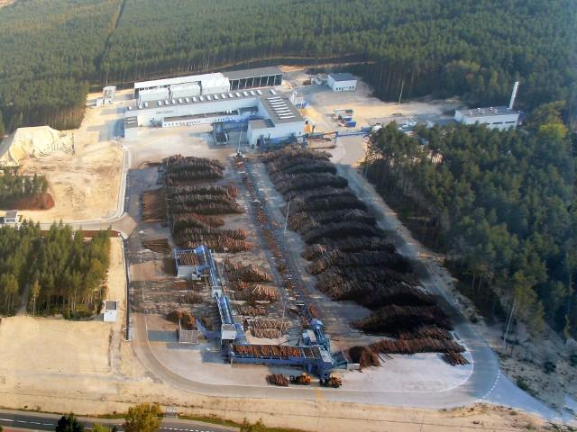Las w okolicy tartaku IKEA, to głównie lasy sosnowe i w tym regionie byłyby wycinane na potrzeby przemysłu
