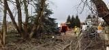 ZIELONA GÓRA. Drzewa, które rosły na ul. Królewny Śnieżki zostały wycięte, by mogła powstać droga. Zobacz zdjęcia i wideo