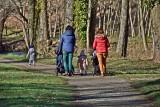 Czy iść na spacer z dzieckiem, gdy szaleje koronawirus? Czy dziecko może iść na plac zabaw? Ekspert wyjaśnia, na co trzeba uważać