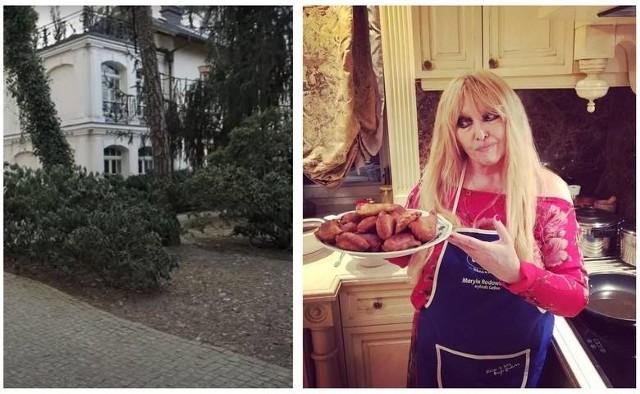 Tak mieszka Maryla Rodowicz. Złote lustra, piękny ogród i koty - zaglądamy do posiadłości w Konstancinie-Jeziornej. Diva polskiej muzyki rozrywkowej lubi królewski przepych, jasne kolory, a szafa pełna butów robi wrażenie. Zobaczcie zdjęcia domu Maryli Rodowicz >>>Na następnych zdjęciach kolejne zdjęcia wnętrz domu Maryli Rodowicz. Aby przejść do galerii, przesuń zdjęcie gestem lub naciśnij strzałkę w prawo.