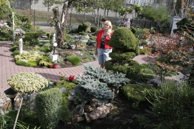 Z setek bylin wybraliśmy najciekawsze, warte zdobycia do własnego ogrodu.ZOBACZ NAJCIEKAWSZE OKAZY