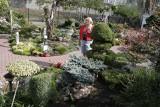 Wyjątkowe rośliny, które warto mieć w swoim ogrodzie lub na działce. To prawdziwe hity