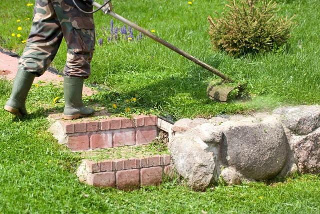 Trawnik to z pewnością nie zieleń bezobsługowa. Nie dość, że wymaga sporo pracy, to jeszcze bez regularnego podlewania nie sposób utrzymać go w dobrym stanie.