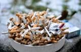 Polacy w Belgii i Niderlandach produkowali własne papierosy. Pomógł Europol