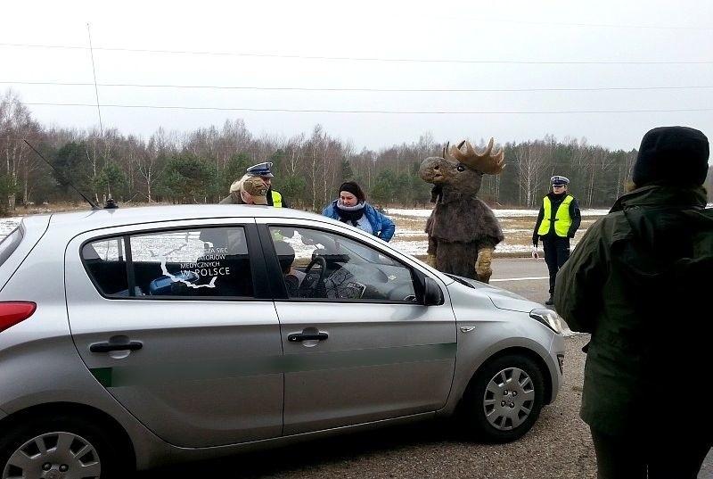 Dla zapewnienia bezpieczeństwa ruchu drogowego i...