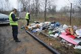 Poznań nie może sobie poradzić z plagą dzikich wysypisk