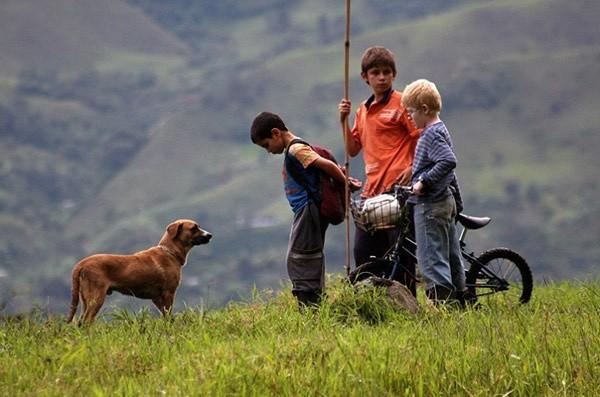 Kadr z filmu Kolorowe wzgórza