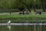 """Muzyka Fryderyka Chopina w poznańskich parkach. W wersji na żywo lub z głośników. """"Muzyka nie powinna być tylko w czterech ścianach"""""""