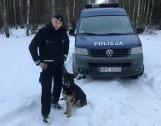Fiona i Buczuś na zasłużonej emeryturze. Policyjne psy z Bydgoszczy teraz będą odpoczywać w domach swoich przewodników