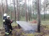 O krok od dużego pożaru