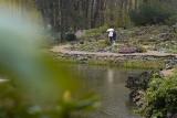 Arboretum w Wojsławicach otwarte od niedzieli 18 kwietnia. Co tam można zobaczyć?