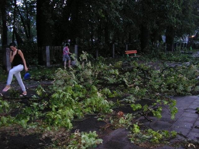 Potężna wichura poczyniła spore szkody w Sulechowie.