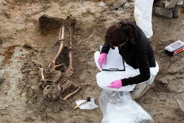 Od początku tego etapu badań koło Aresztu Śledczego znaleziono co najmniej pięć szkieletów.