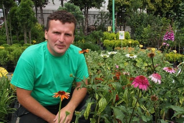 Efektowne jeżówki i hibiskusy. Pięknie kwitną aż do jesieni - Jeżówka to piękny kwiat, często wykorzystywany  do celów leczniczych - mówi Sławomir Gómuła z ACM Agrocentrum Kielce.