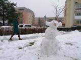 Zima 2021. Sypnęło śniegiem, to i są bałwany. Musisz je zobaczyć! Oto niezwykłe zdjęcia bałwanów znalezionych w Gdańsku GALERIA