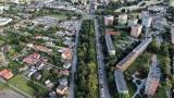 Dąbrowianie wybrali najlepszy projekt w budżecie obywatelskim. Za ponad 4 mln zł wypięknieją planty w rejonie ul. Kopernika i Poniatowskiego