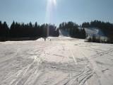 Stok narciarski w Kalnicy [WYCIĄGI I TRASY]