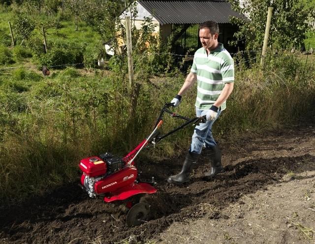 Jak przygotować podłoże w ogrodzie na cały sezon (ZDJĘCIA)Jak przygotować podłoże w ogrodzie na cały sezon (ZDJĘCIA)