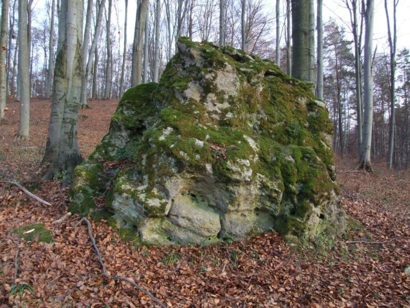 Diabelski kamień w okolicach Woli Wielkiej.