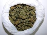 Syn byłej wójt Kleszczowa został skazany za posiadanie marihuany
