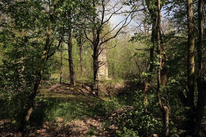 Wieża widokowa na Łysicy przemiodtem sporu. Jest petycja do Parku Narodowego