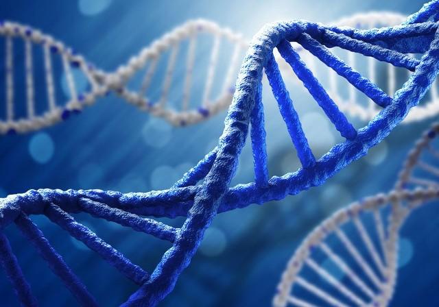 Zespół Edwardsa jest stosunkowo rzadką chorobą genetyczną.