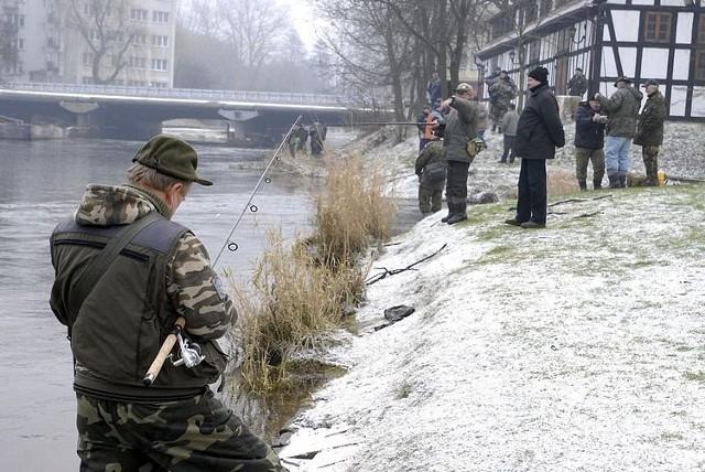 Początek sezonu na trocie i lososie w Slupsku.