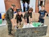 Jesienne sprzątanie Noteci w Inowrocławiu. Zrób to w sobotę 2 października razem z harcerzami