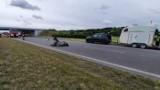 Wypadek na A2 - koń wbiegł na jezdnię i połamał sobie nogi. Autostrada została zablokowana