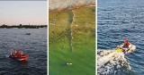 Gdańsk: Mężczyzna zniknął pod falami, 200 metrów od brzegu. Prąd znosił go w głąb Zatoki Gdańskiej. Ofiarna akcja ratunkowa