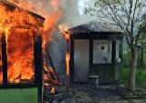 Pożar w Jastrzębiu. Domek na działkach płonął jak pochodnia. Czy to podpalenie?