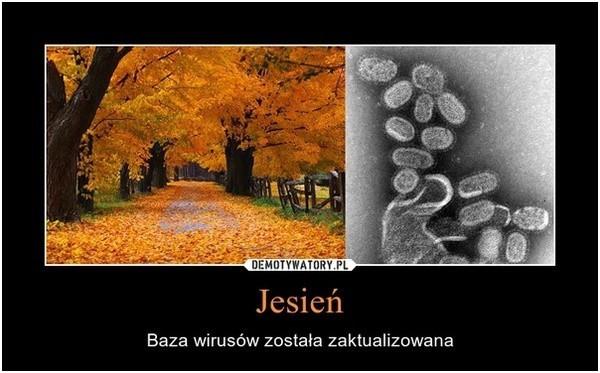 1 Dzień Jesieni Na Wesoło Memy Kiedy Rozpoczyna Się