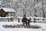 Po tragedii z jeleniami w Ińsku Straż Leśna będzie kontrolować zbieraczy poroży [ZDJĘCIA]