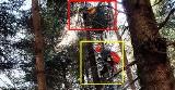 Paralotniarz spadł z nieba i zawisł na drzewie we wsi pod Limanową