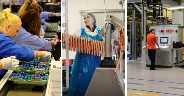 W Toruniu widać duże ożywienie na rynku pracy. Oto, kogo potrzebują w czerwcu znane zakłady produkcyjne i markowe sieci handlowe. Niektóre oferty zawierają naprawdę atrakcyjne warunki zatrudnienia.Czytaj dalej. Przesuwaj zdjęcia w prawo - naciśnij strzałkę lub przycisk NASTĘPNE