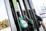 Ceny detaliczne najpopularniejszych paliw już przekroczyły próg 5 zł za litr!
