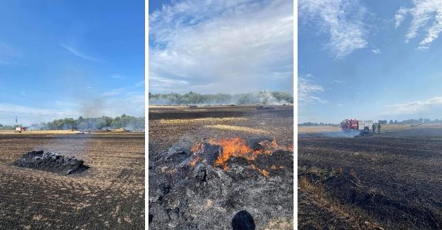 Pożar rżyska i balotów słomy w gminie Suchy Dąb w poniedziałek, 16.08.2021 r.