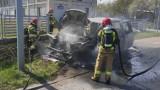 Pożar samochodu osobowego na drodze nr 163 w Kołobrzegu. Auto spłonęło doszczętnie [ZDJĘCIA]