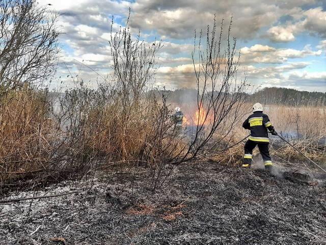 Strażacy z OSP KSRG  Koronowo gasili w weekend pożar w Srebrnicy