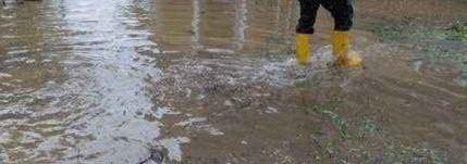Gubin obronił się przed wielką wodą. Zalane są tylko niektóre ulice i część piwnic. Na zalanych ulicach nie ma prądu.