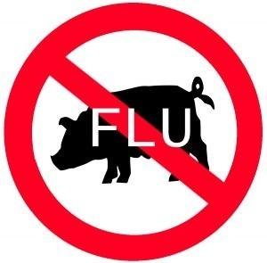 """""""Nowa grypa"""" - mutant grypy A H1/N1 zawiera geny wirusów świń i ludzi, to ostra choroba zakaźna przenoszona drogą kropelkową."""