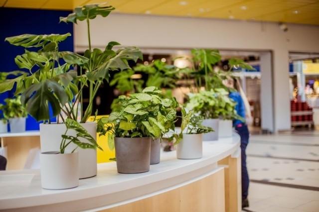 W poniedziałek 1 lutego 2021 otwarte mogą zostac wszystkie skepy w galeriach handlowych. Szykują się na to łódzkie centra handlowe, m.in. Port Łódź.
