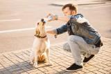 Twojego psa męczą upały? Tak możesz mu pomóc. Zadbaj o swojego pupila