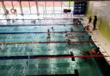 Szczecin. Nowy basen przy SP 10 podczas ferii zimowych zapełnił się dziećmi [ZDJECIA]