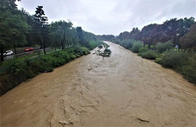 Choć Kamienica przekroczyła stan ostrzegawczy o trzy centymetry, poziom wody wykazuje tendencję spadkową