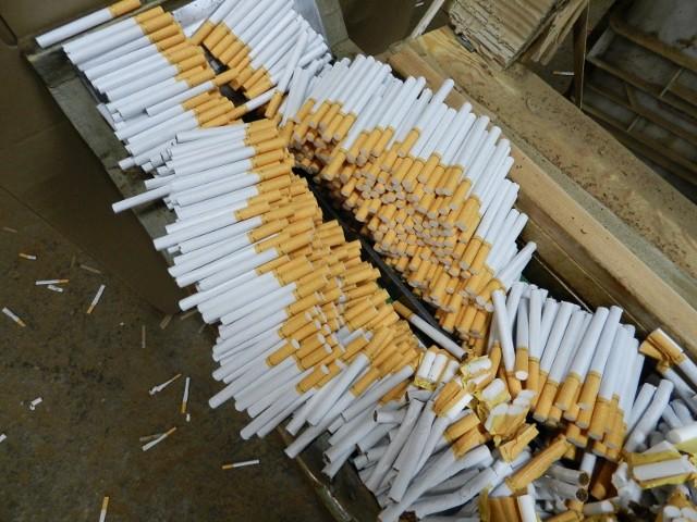 Łódzcy funkcjonariusze pomogli zlikwidować nielegalną fabrykę papierosów w Sochaczewie
