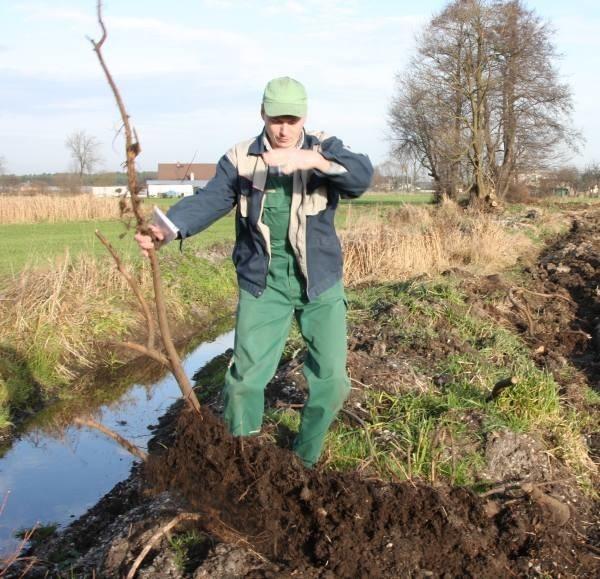 - Hałda ziemi i błota sprawia, że nawet traktor tędy nie przejedzie - skarży się Marian Witek.