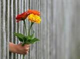ŻYCZENIA NA DZIEŃ NAUCZYCIELA 14.10.2020. Dzień Nauczyciela 2020. Najlepsze życzenia i wierszyki na Dzień Nauczyciela 14 października